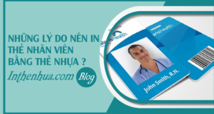 faq-nhung-ly-do-nen-in-the-nhan-vien-bang-the-nhua